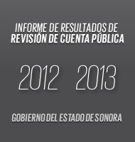 Revisión cuenta pública